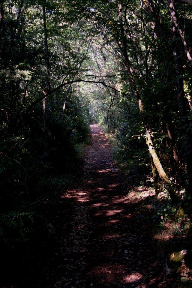 Montcabrier Trail