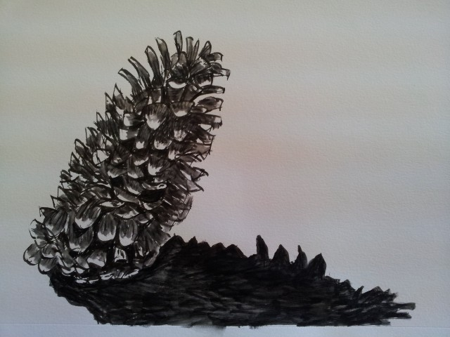 Pine Cone in Ink