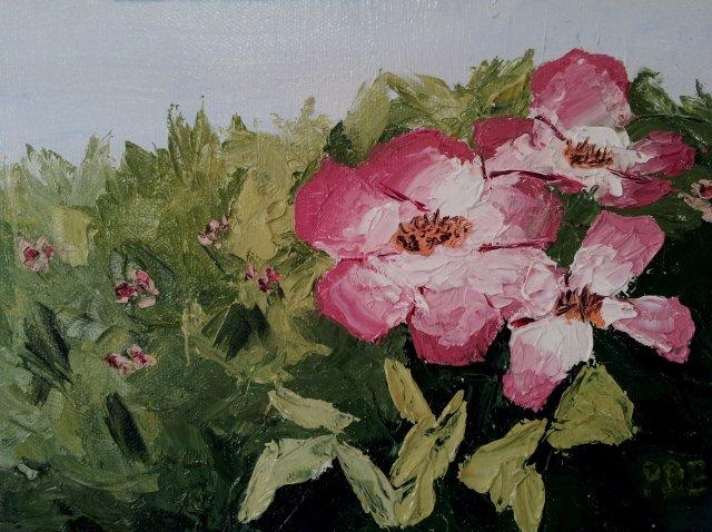 Roses - Oil
