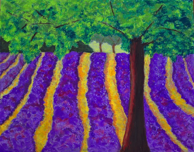 Provencal Lavender Field
